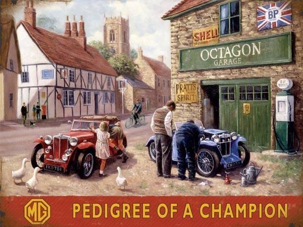 Bilde av MG Pedigree of a Champion